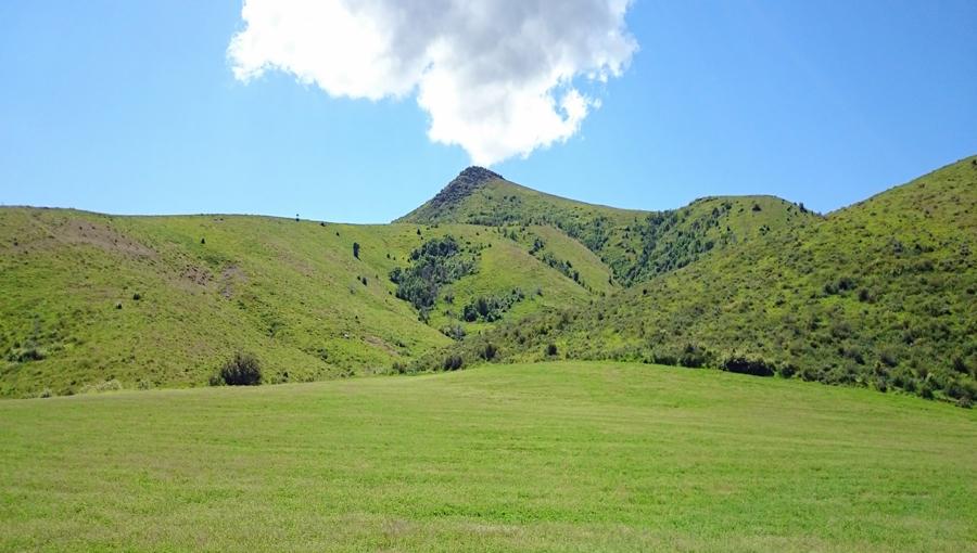 Rocky Peak Meadow - Idaho