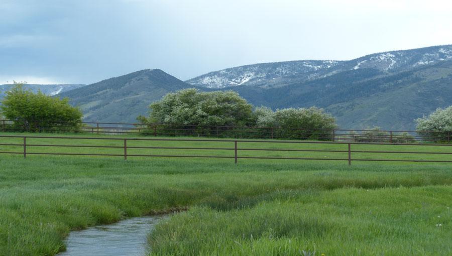 Serenity Ranch Landscape