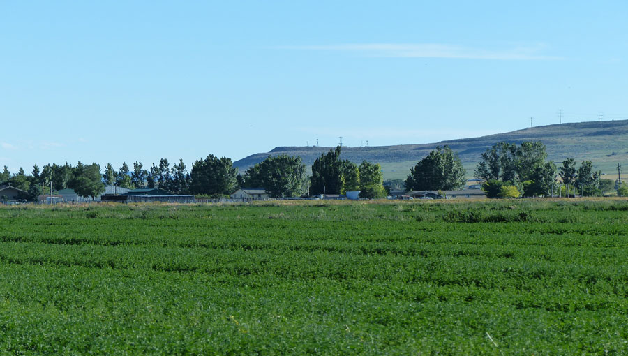 Zundel Farms